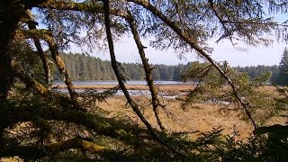 Grant's Getaways: South Coast Dunes & Estuaries