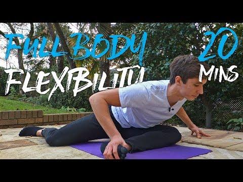20 Minute Full Body Flexibility Routine! (FOLLOW ALONG)