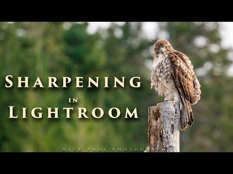 Sharpening in Lightroom - Tutorial