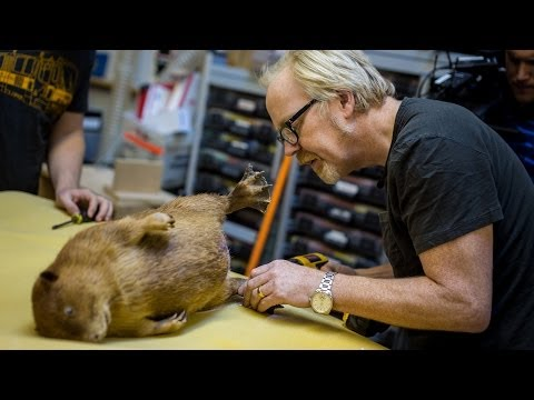 Adam Savage's One Day Builds: Traveling Beaver Box