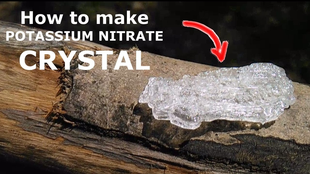 How to Grow Beautiful Crystal out of Potassium nitrate!