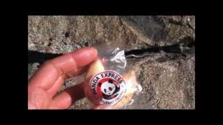 Panda Express: Fortune Cookie Review