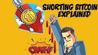 Bitcoin Crashing - How To Profit from The Crypto Crash