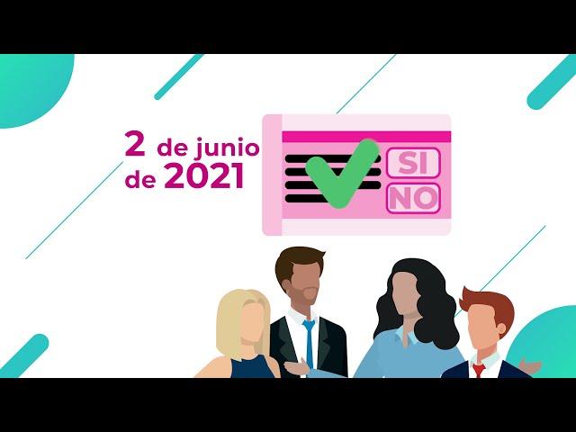 ¿Cómo y por qué se convoco la Consulta Popular 2021?