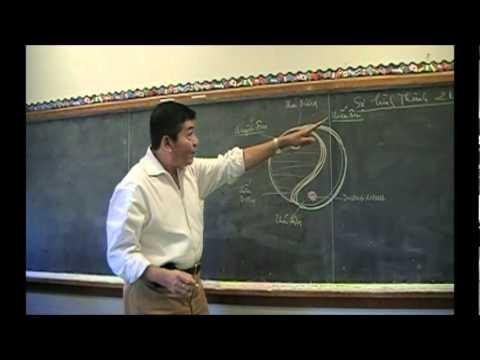 Bài Học Châm Cứu và Mạch Lý - Bài 5a