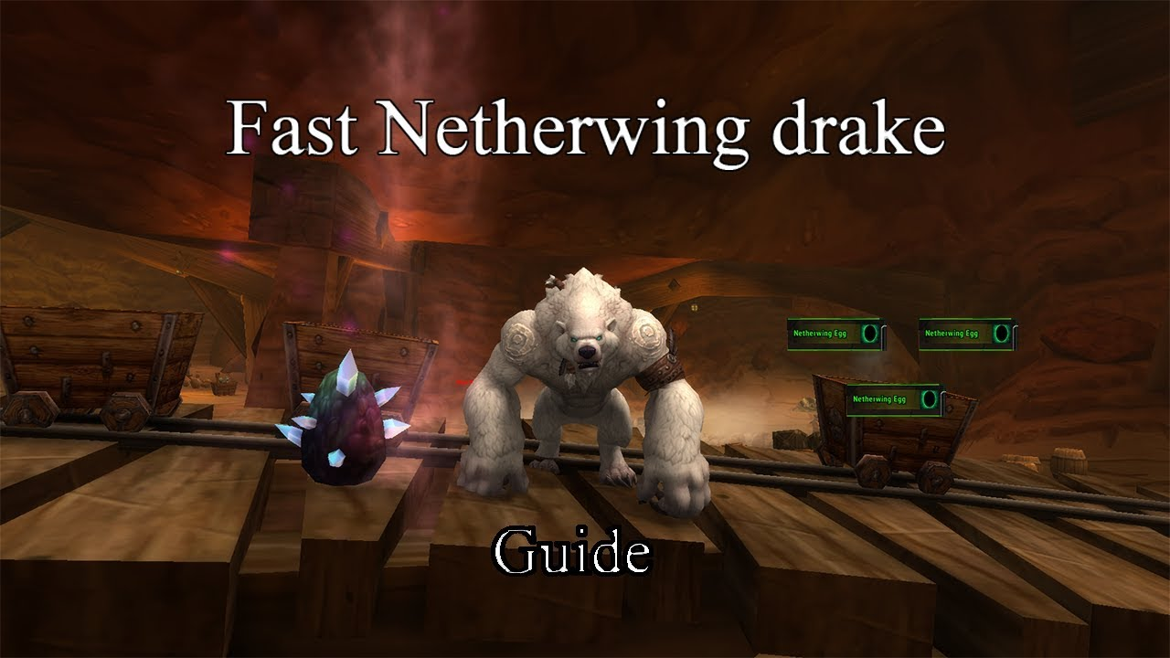 Fast Exalted Netherwing Drakes Guide