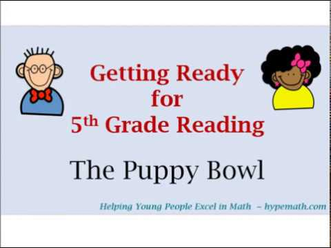 4th Grade Reading Comprehension Review  (The Puppy Bowl)
