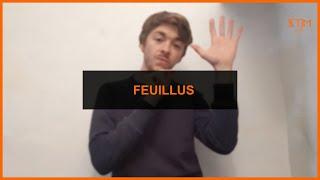 Biodiversité - Feuillus