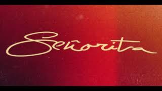 Download Shawn Mendes -  Señorita (Official Solo Version)