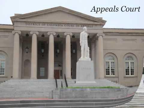 Federal Judiciary