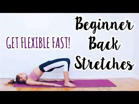 back stretches for the inflexible beginner flexibility