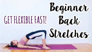 Back Stretches For The Inflexible! Beginner Flexibility Routine