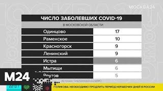 В Подмосковье число зараженных коронавирусом выросло до 177 - Москва 24