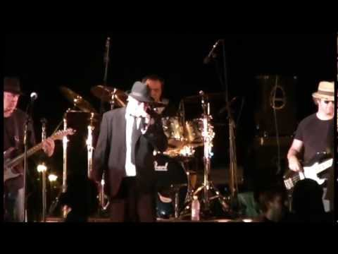 The Blues Bros and Brad's Sound Company rock Darwin