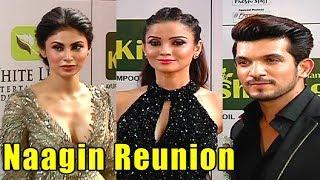 Naagin Reunion   Fun Chat with Ada, Mouni & Arjun At Gold Award 2018