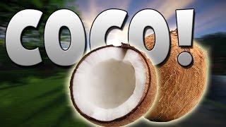COCO :v