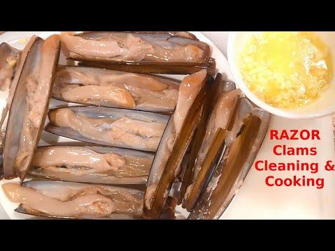 刀蛤 Razor Clams