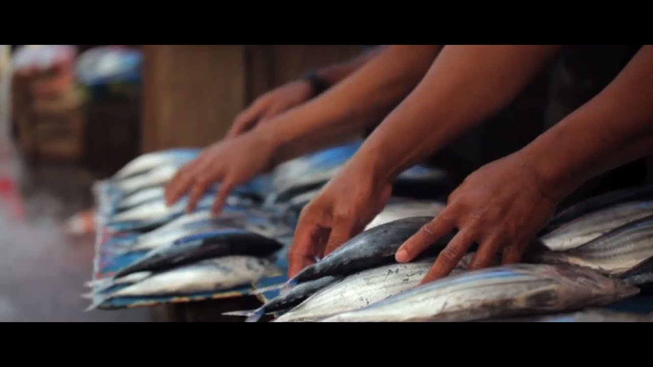 Sustainable Fisheries, 5th theme of the 2017 #OurOcean conference