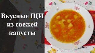 Щи из свежей капусты. Как легко приготовить!