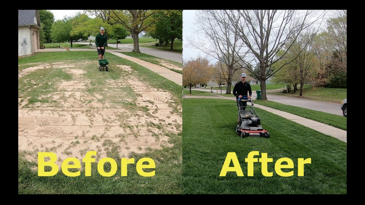 Fix your UGLY lawn with OVERSEEDING (step by step guide)