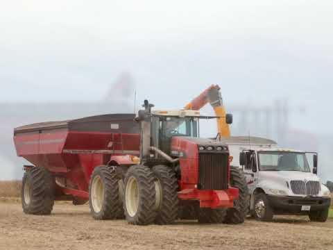 Farming in Royal Illinois 2018