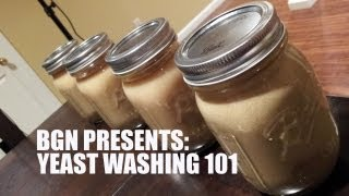 Yeast Harvesting and Washing 101 | Beer Geek Nation Homebrew Videos