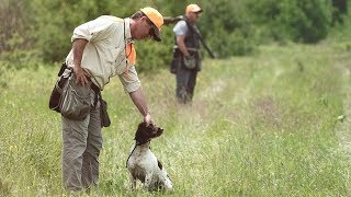 Episode 24: Todd Agnew Training Trainers To Handle Spaniels