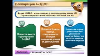 Отчетность ИП на общей системе налогообложения