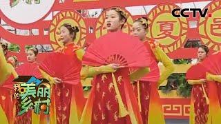 《我的美丽乡村》 20200502 河南夏邑|CCTV农业