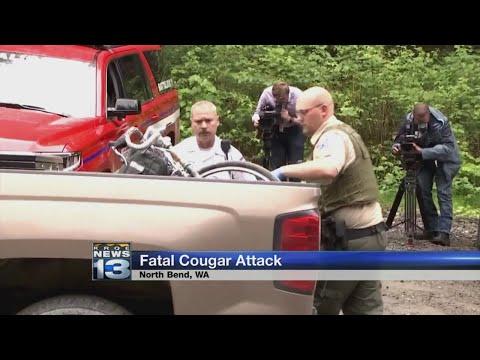 Cougar kills 1 mountain biker, injures 2nd near Seattle