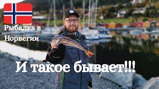 Рыбалка в Норвегии Рыбалка с берега И такое бывает Норвегия Осень 2019