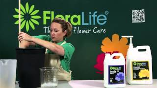 Hydrating Flowers with Floralife® Quick Dip and Flower Food for Flower Care