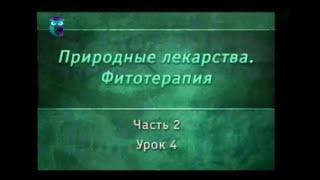 Фитотерапия. Урок 2.4. Лекарственные растения, влияющие на нервную систему