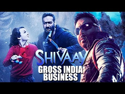 Shivaay BLOCKBUSTER HIT | Box Office India Collections