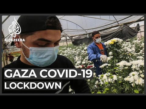 Gaza coronavirus lockdown makes things worse for its farmers