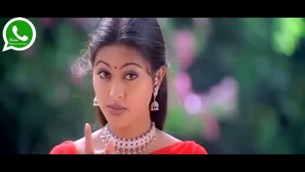 Cute Vijay ,Tamil whatsapp status video || whatsapp video ...