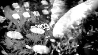 SUGIZO NEW ALBUM 「音 (OTO) 」 11.29 http://sugizo.com.