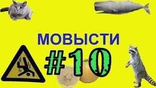 #10. Погоня за счастьем