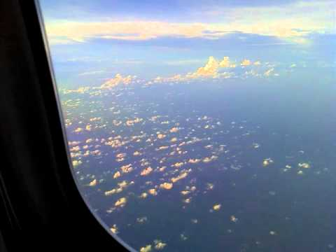 AA Flight 878 Tampa to Dallas