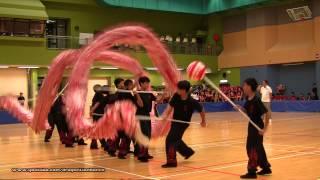 第21屆全港公開學界龍獅藝錦標賽:中學競速舞龍組 - (5)