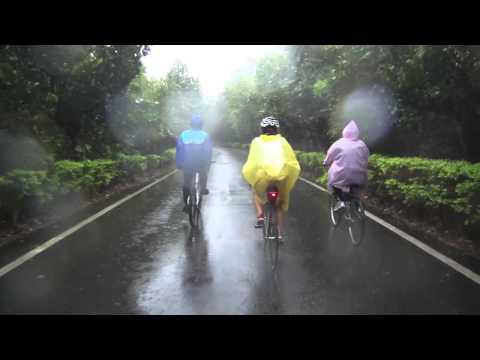 Cycling in Xinwu Green Tunnel1