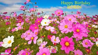 Robin  Nature & Naturaleza - Happy Birthday