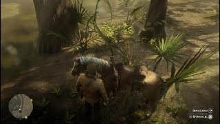 Red Dead Redemption 2 found a new place but was destroyed