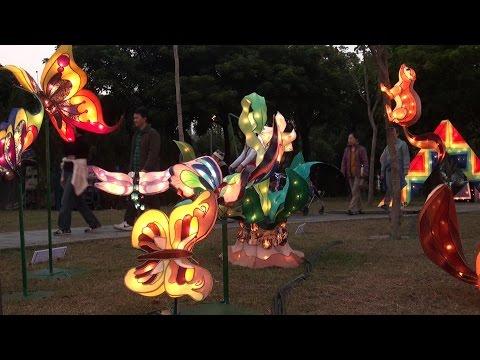 Тайвань. Алишань и Фестиваль фонарей в Тайбэе (Taiwan. Alishan & Taipei Lantern Festival)