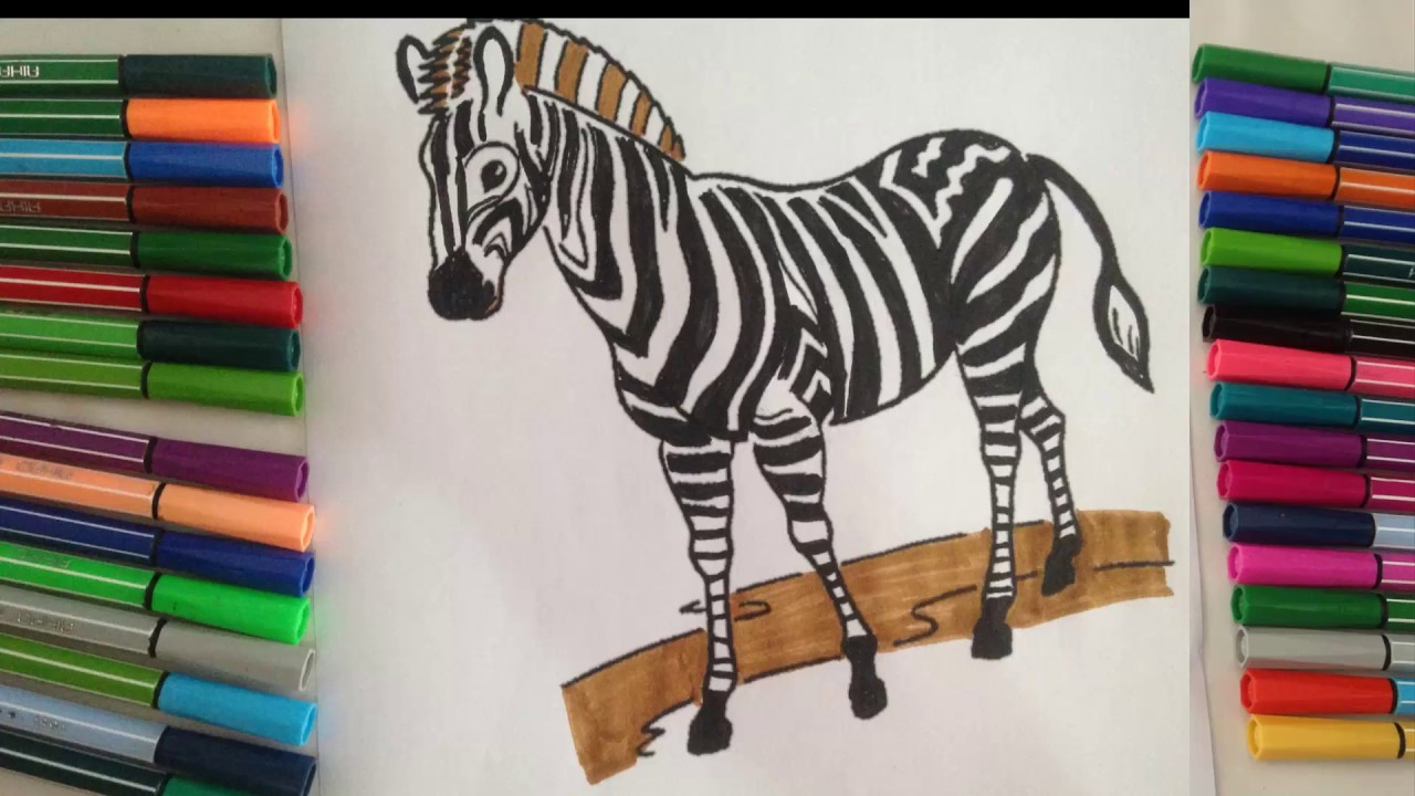Coloring Pages For Zebra : Zebra coloring pages for kids zebra coloring pages cartoon hd