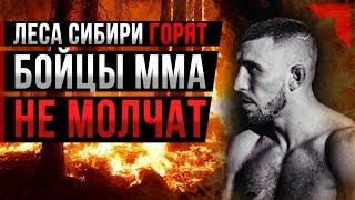 Леса Сибири горят - Бойцы ММА не молчат