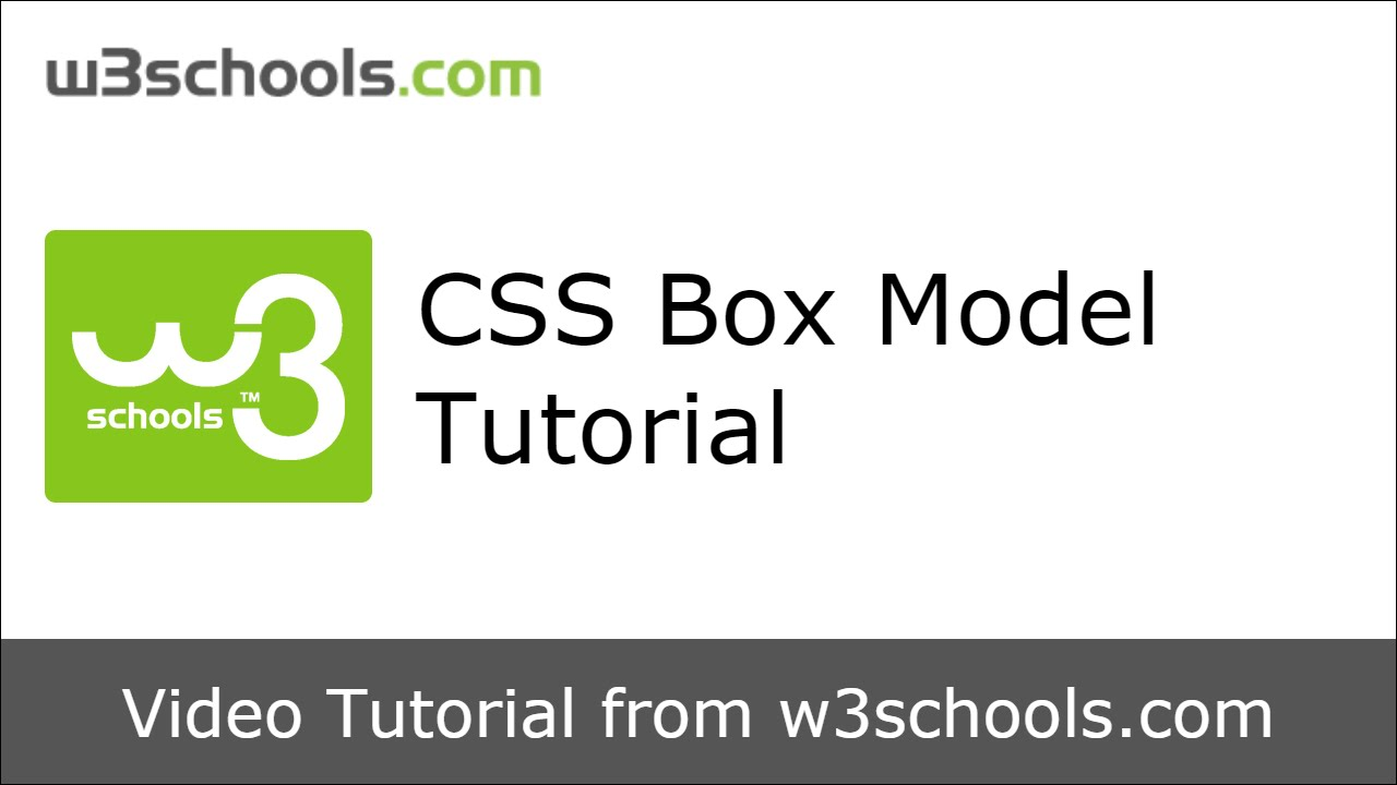 W3schools css box model tutorial youtube.