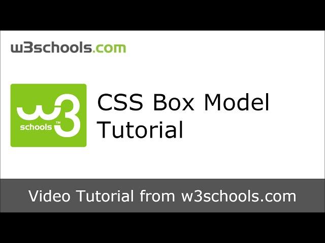 W3Schools CSS Box Model Tutorial