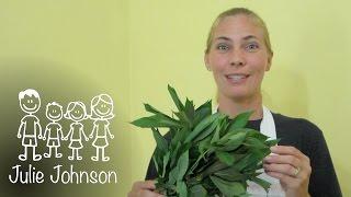 Gulai Daun Singkong - Cassava Leaves