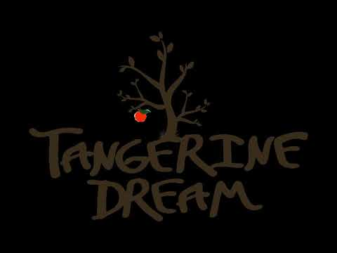 Tangerine Dream Electric Orgasm CD 1-4: RARE And UNRELEASED Tracks